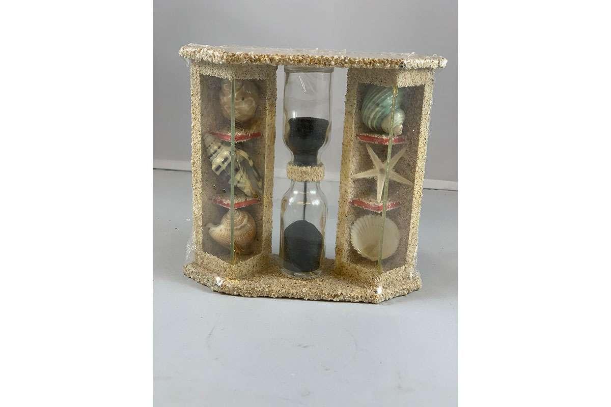 Hourglass Sea Shell (HEE311)